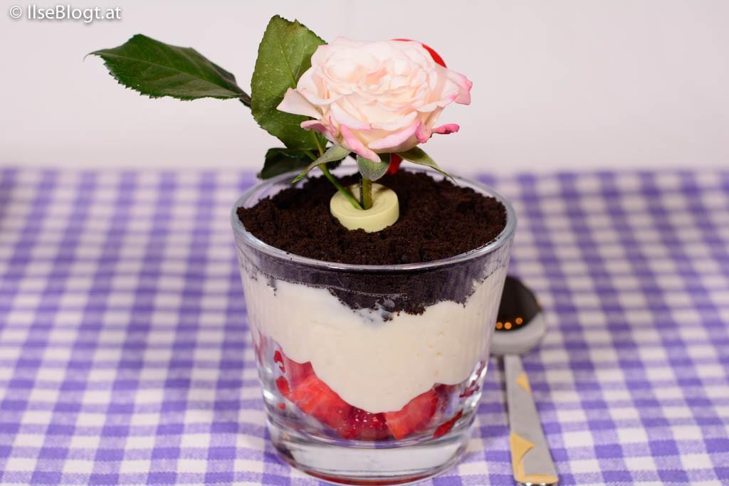 Pudding-0003