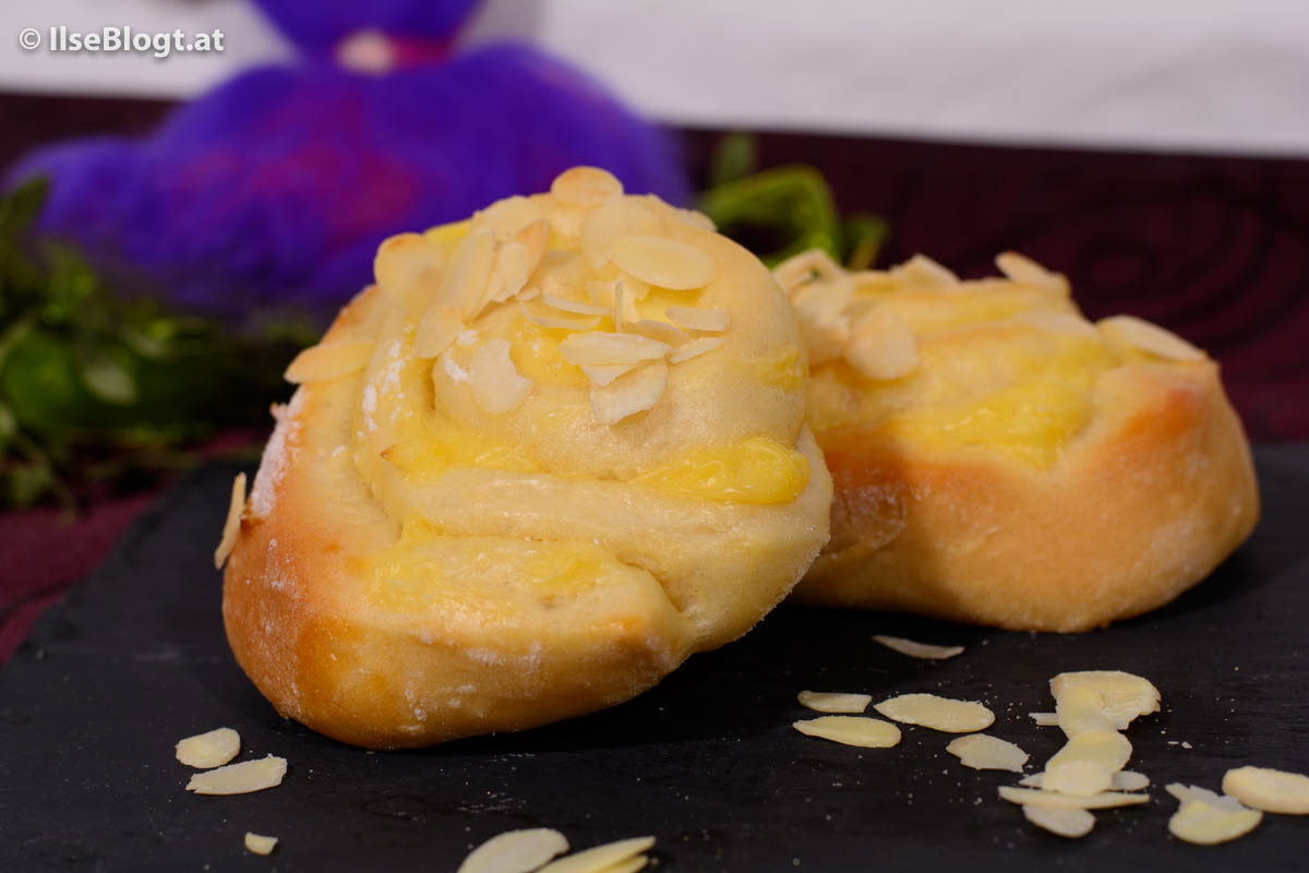 Puddingschnecken-0002