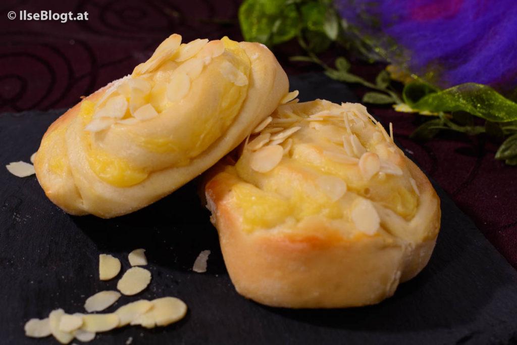 Puddingschnecken-0006